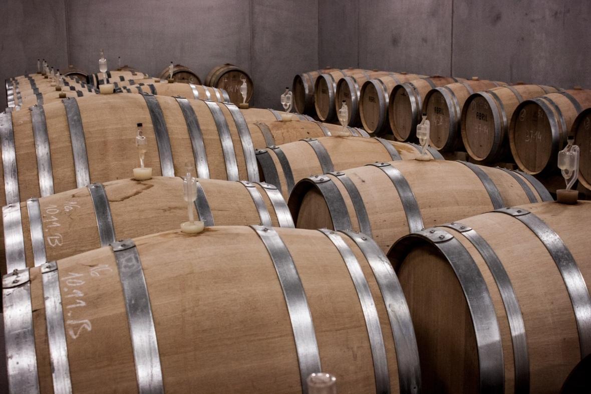 Équipement pour la vinification EGRETIER